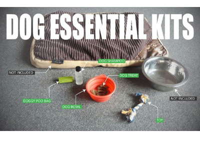 Dog essential kits